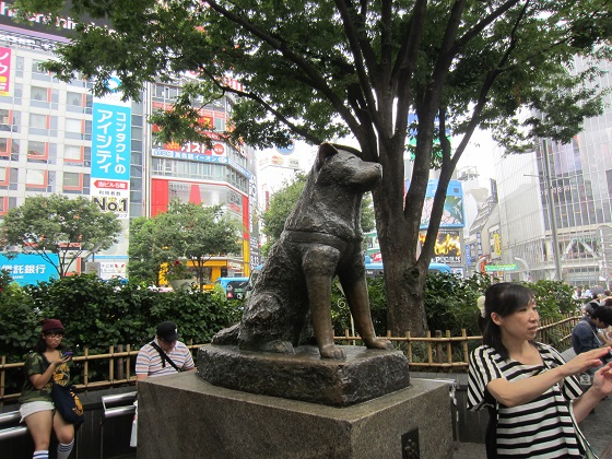 DogHachi